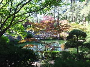 The view from the Japanese Gardens. So pretty!